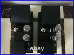 2A3 push pull tube mono blocks, custom hand made. Great sound