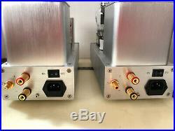 300B single end tube mono blocks. Custom hand made, great sounds