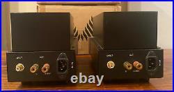 Antique sound lab AV-8 monoblock tube amps witg box