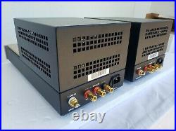 Canary Audio CA-300 Single-Ended Mono Block Tube Amplifiers in Mint Condition