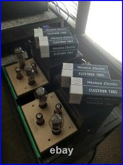 Canary Audio M330 monoblock amps with Western Electric 300B tubes
