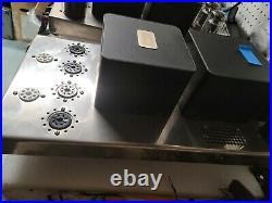 Cary Audio SLM-100 Monoblock Power Amplifier KT88 Tubes (Excellent Condition)