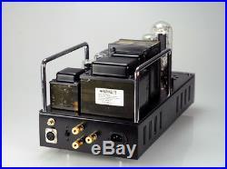 RAPHAELITE Sinovt 2A3-845 MonoBlock Tube Amplifier New