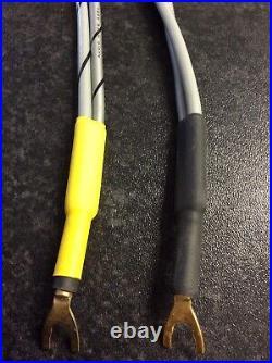 RARE Audio Note QSSR (AN-Vx) Speaker Cables, For Mono Block Tube Amps (Kondo)